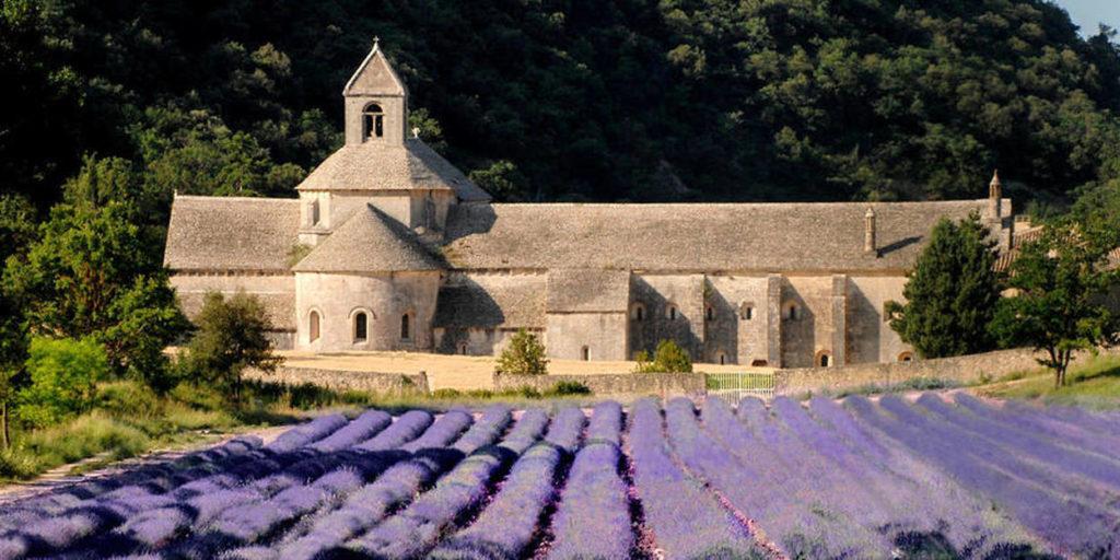 Abbaye de Sénanque et ses lavandes - Gordes