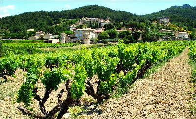 Gigondas - Route des vins
